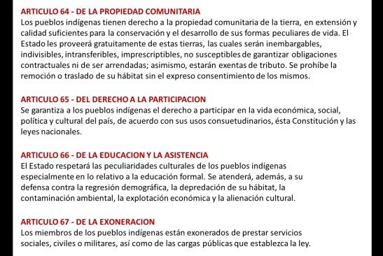 Los indígenas en la Constitución Nacional de Paraguay1